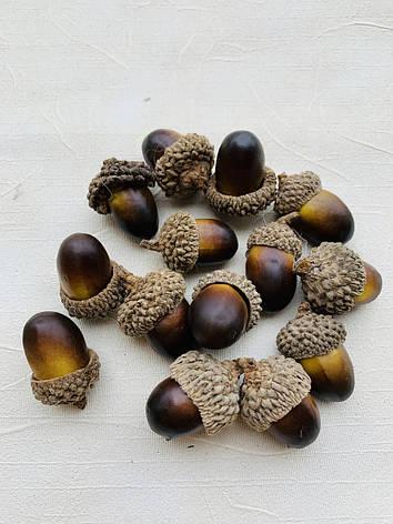 Штучні жолуді.Жолуді декоративні(3 см), фото 2