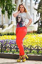 Д656  Женские брюки  с подворотом  Коралл, фото 2