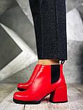 Шикарные кожаные и замшевые красные демисезонные женские ботинки на каблуке, фото 10