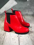 Шикарные кожаные и замшевые красные демисезонные женские ботинки на каблуке, фото 6