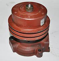 Насос водяного охлаждения БЗА 245-1307010-А1