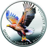 Орлан-білохвіст монета 2 гривні, фото 2