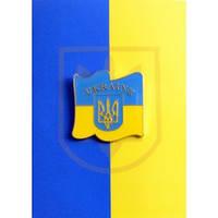 Значок Украина U905
