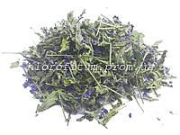 Вероника лекарственная 50 грамм (трава вероники)