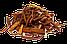 Мамахуана сухой набор из Доминиканы, фото 6