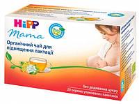 Чай для повышения лактации хипп hipp HIPP