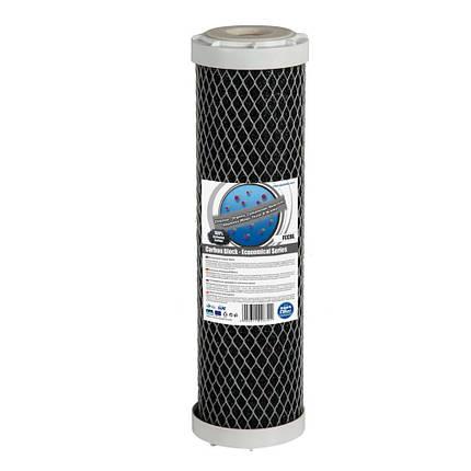Угольный картридж Aquafilter FCCBL, фото 2