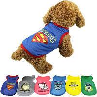 Майка-сеточка для собак «Мультики»