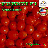 Семена, томат Черри (низкорослый)  ФРЕНЗИ F1, ТМ Lark Seeds, 5000 семян, фото 2