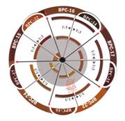 Колор карта для бровей