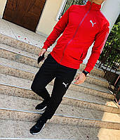 Спортивный  костюм мужской Немо