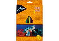 Карандаши цветные пластиковые Economix Animal World 24 цвета трехгранные E15141