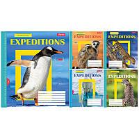 Тетрадь школьная, 24 листа, клетка, Expeditions, цена за упаковку 20 штук, 762431