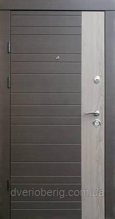 Входная дверь Qdoors Альт-М венге серый горизонт - дуб флорида, фото 2