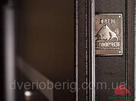 Входная дверь Двери Белоруссии (входные) Средний сегмент ГОРИЗОНТАЛЬ ВЕНГЕ, фото 3