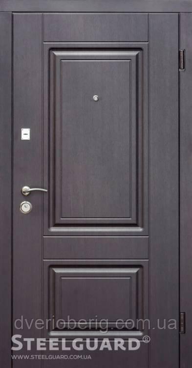Входная дверь Steelguard Resiste DO-30