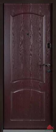 Входная дверь Двери Белоруссии (входные) Средний сегмент ВЕНЕЦИЯ МАХОН, фото 2