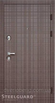 Входная дверь Steelguard Maxima Scotch Венге горизонт, фото 2