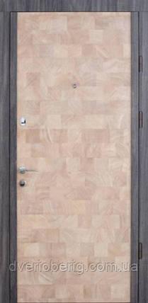 Входная дверь Страж Standart Софья, фото 2