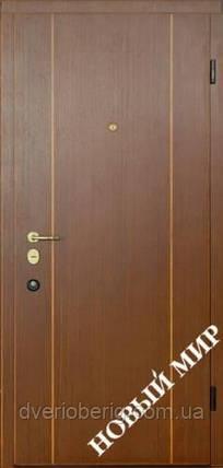 Входная дверь Новый Мир Новосёл Новосел М.5 Вертикаль В 2, фото 2