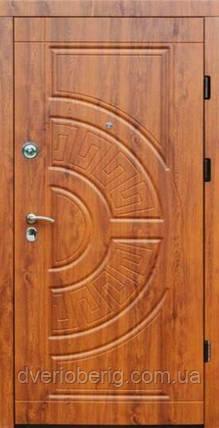 Входная дверь Форт Премиум Форт Греция Премиум Винорит, фото 2