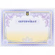 Сертифікат №43