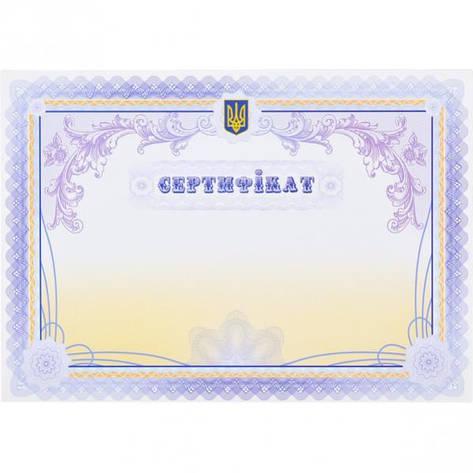 Сертифікат №43, фото 2