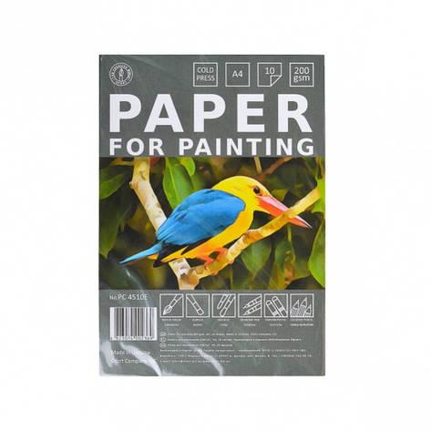Бумага для рисования А4 10 листов, 200г/м², в п/п пакете, фото 2