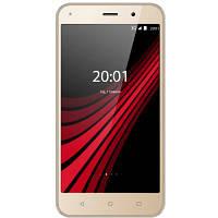 Мобильный телефон Ergo B506 Intro Gold