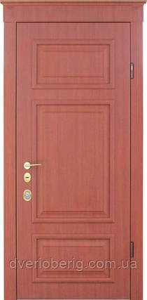 Входная дверь Страж Standart Верия, фото 2