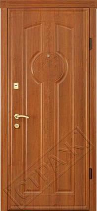 Входная дверь Страж Standart R59, фото 2