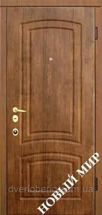 Вхідні двері Новий Світ Новосел Новосел М 7.5 Пароді, фото 2