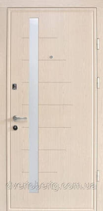 Входная дверь Страж Standart Дельта, фото 2