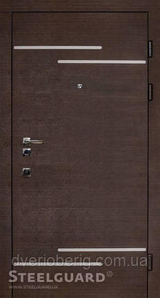 Входная дверь Steelguard Solid Rizor, фото 2
