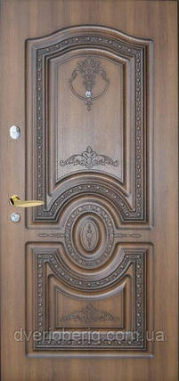 Входная дверь Термопласт Одностворчатые 78, фото 2