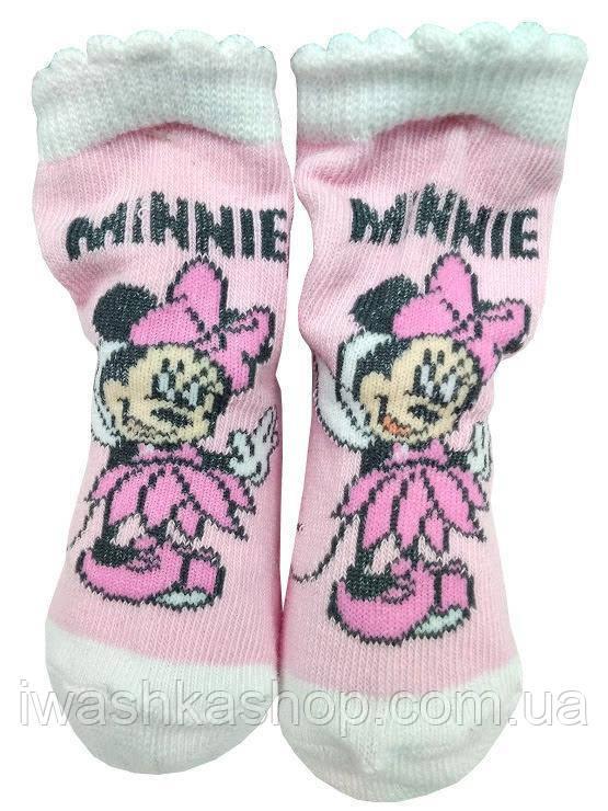 Светлые носочки с Минни Маус на девочек 6 - 12 месяцев, Disney baby