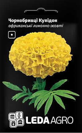 Семена Бархатцы африканские Купидон лимонно-желтые 5г LEDAAGRO, фото 2