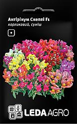 Семена Антириум карликовый Снеппи F1 смесь 10шт LEDAAGRO