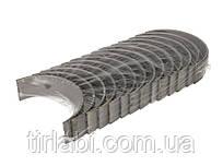 Вкладыши коренные рено премиум магнум RENAULT HL STD (DCi11)