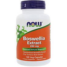 """Экстракт босвелии NOW Foods """"Boswellia Extract"""" 250 мг (120 капсул)"""