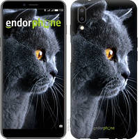 """Чехол на Meizu E3 Красивый кот """"3038u-1518-716"""""""