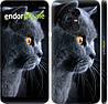 "Чехол на Xiaomi Redmi 5 Plus Красивый кот ""3038c-1347-716"""