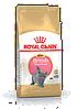 АКЦИЯ Сухой корм Royal Canin Kitten British для котят британской кошки, 2КГ + паучи 85 г., 3 шт - Фото