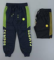 Спортивные брюки для мальчиков S&D оптом, 116-146 рр., фото 1