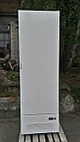 Холодильник глухий промисловий Технохолод600 л. бо. холодильна шафа бо., фото 3