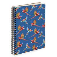 Блокнот Sketchbook Попугаи А5 (BDP_TRO022)