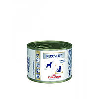 Royal Canin Recovery 0.195 кг