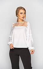 Жіноча нарядна блузка з сіткою (4 кольори), фото 3