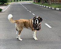 Нагрудник / слюнявчик для собаки большой водонепроницаемый Pets Couturier SIMBA бежевый