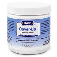 Пудра отбеливающая Davis Cover-Up Whitening Powder